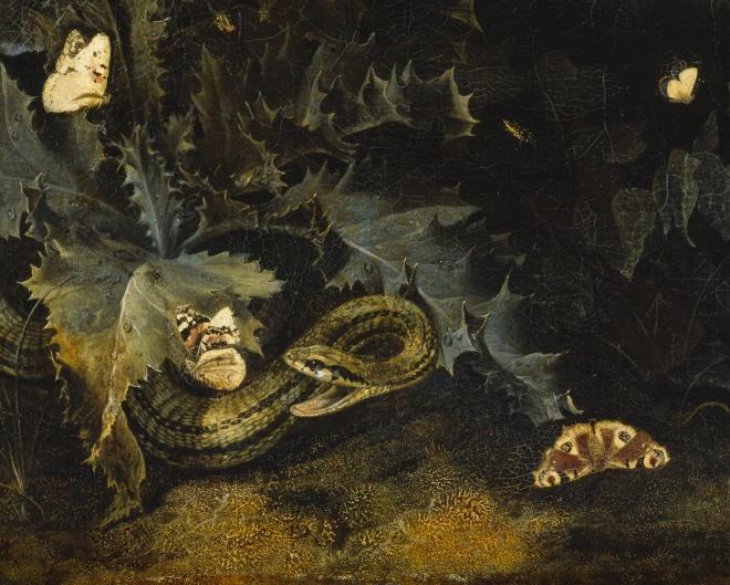 marseus-thistle-snake-detail